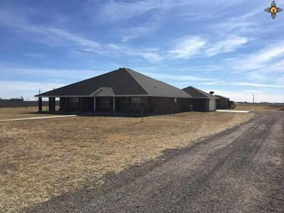 1029 TALLGRASS LN, Clovis, NM 88101 - Photo 2