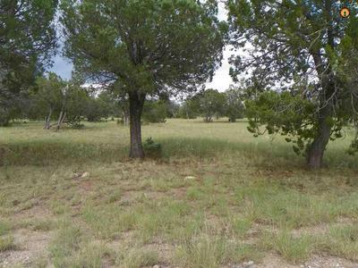 26 HAMPTON RD, Reserve, NM 87830 - Photo 1