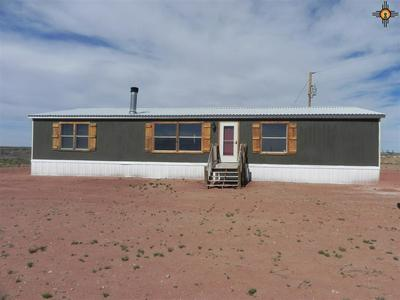 26954 US HIGHWAY 60, FT SUMNER, NM 88119 - Photo 1