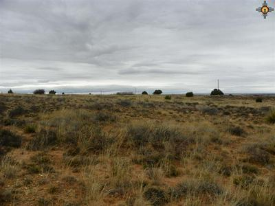 00 RIVER RANCHES ROAD, Fort Sumner, NM 88119 - Photo 2