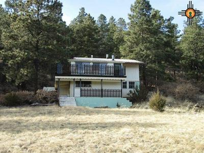 1137 STATE HIGHWAY 518, Sapello, NM 87745 - Photo 1