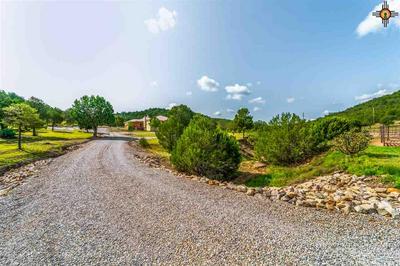 137 CHAMA CANYON RD, Ruidoso, NM 88312 - Photo 1