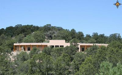 11 MOUNT OLYMPUS RD, Silver City, NM 88061 - Photo 1
