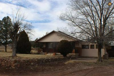 19 DORA AVE, RESERVE, NM 87830 - Photo 1
