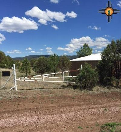 12 VALLE VISTA, LUNA, NM 87824 - Photo 1