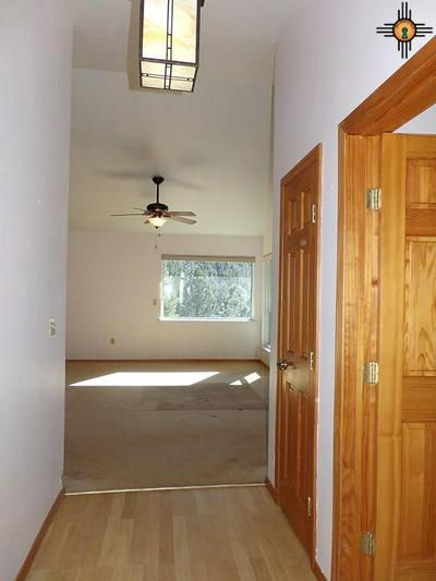 88 COUNTY ROAD A4A, Sapello, NM 87745 - Photo 2