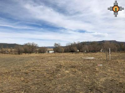 1042 CLAYTON RD, RATON, NM 87740 - Photo 1