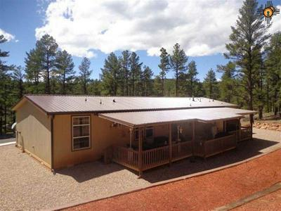 10 PINE TREE RD, Sapello, NM 87745 - Photo 1