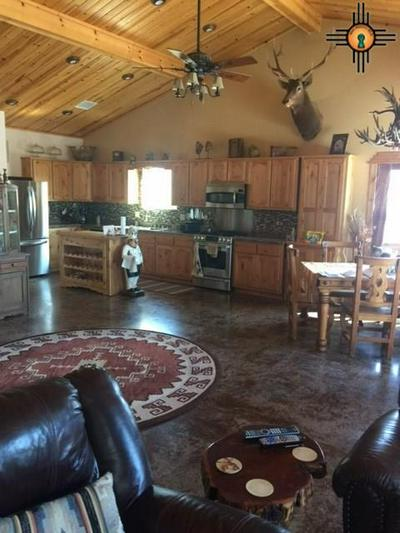 19 DUSTY RIVER DR, RESERVE, NM 87830 - Photo 2