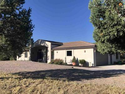 86 NIKI RD, Silver City, NM 88061 - Photo 1