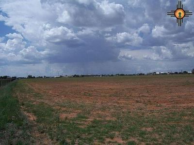 NW 1/4 SEC 30 T1S R35E, Portales, NM 88130 - Photo 2