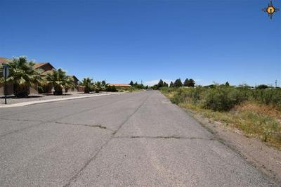0000 CHANEY DRIVE, Deming, NM 88030 - Photo 2