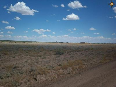 X MONTEZUMA ROAD SE, Deming, NM 88030 - Photo 1