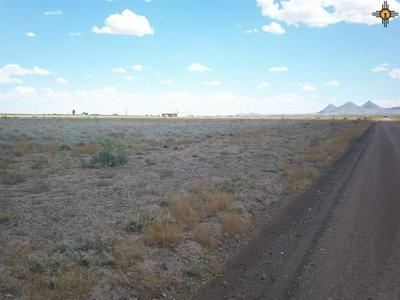 X MONTEZUMA ROAD SE, Deming, NM 88030 - Photo 2