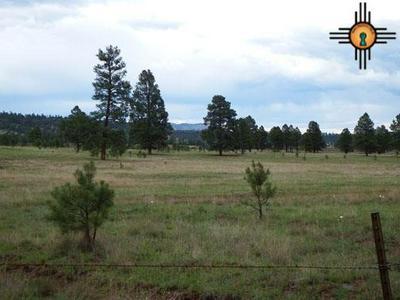 183 LUNA VALLEY DRIVE, LUNA, NM 87824 - Photo 1
