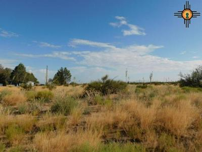 CALLE DE RANCHERO SW, Deming, NM 88030 - Photo 1