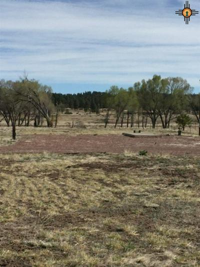 15 FRIDEN RD, LUNA, NM 87824 - Photo 2