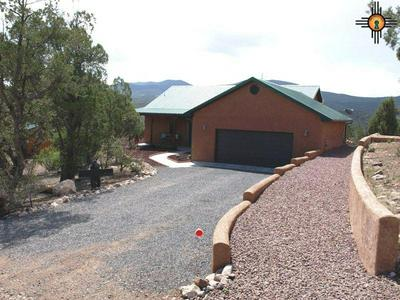 19 DUSTY RIVER DR, RESERVE, NM 87830 - Photo 1