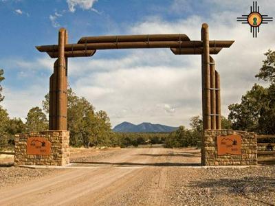 LOT 157 SPRING CANYON RANCH, Quemado, NM 87829 - Photo 1