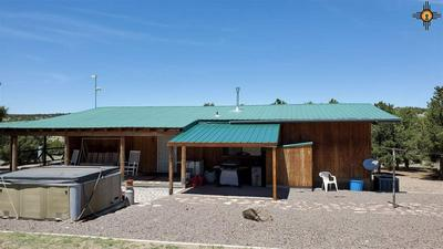 160 HORSESHOE TRL, Quemado, NM 87829 - Photo 2