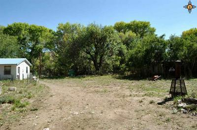 10625 HIGHWAY 152, HILLSBORO, NM 88042 - Photo 2