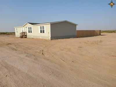 650 JICARILLA RD, Hagerman, NM 88232 - Photo 1