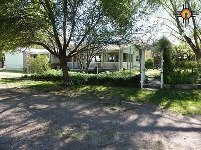 7 LONE PINE DR, Glenwood, NM 88039 - Photo 2