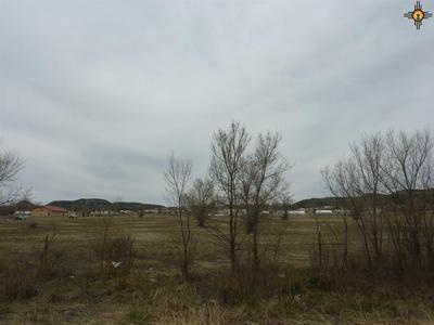 151 TIGER DRIVE, Raton, NM 87740 - Photo 1