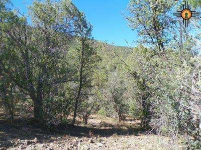 30 RIVERS WEST DR, Reserve, NM 87830 - Photo 2