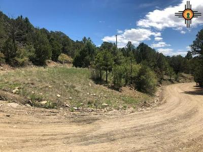 TRAIL CANYON RD, Raton, NM 87740 - Photo 1