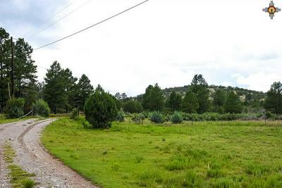 1592 HIGHWAY 24, Weed, NM 88344 - Photo 2