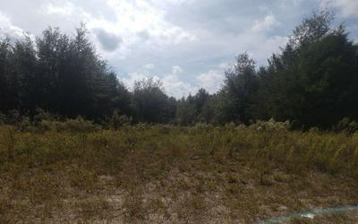 89TH ROAD (3-5AC.), OBrien, FL 32071 - Photo 2