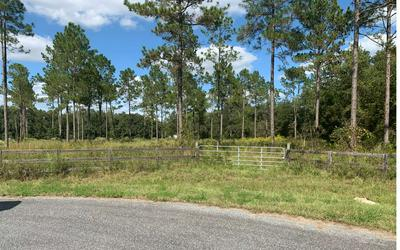 TBD SW BARON GLN, Fort White, FL 32038 - Photo 2