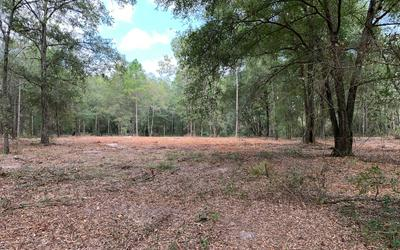 N 127TH DRIVE (MY GPS CALLED IT LOBLOLLY LANE) **19625 127TH DRIVE IS RIGHT ACROSS THE ROAD., OBrien, FL 32071 - Photo 1