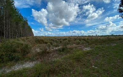 TBD SW 44TH AVENUE, Jasper, FL 32052 - Photo 2