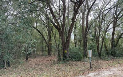 TBD 147TH RD, Live Oak, FL 32060 - Photo 2