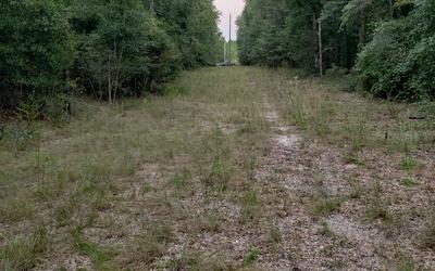 LOT 27 163RD DRIVE, OBrien, FL 32071 - Photo 2