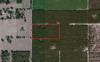 125TH ROAD, McAlpin, FL 32060 - Photo 1