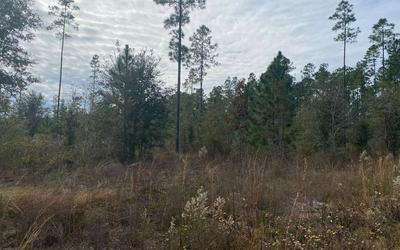 SE SADDLE BROOK TRL, Lee, FL 32059 - Photo 2