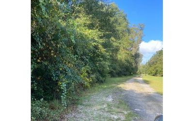 148TH PASS, Live Oak, FL 32062 - Photo 1