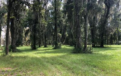 NW 59TH AVENUE, Jennings, FL 32053 - Photo 2