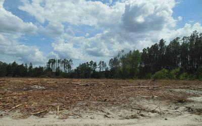 TBD SW 52ND TERRACE, Jasper, FL 32052 - Photo 2