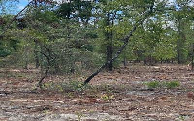 EFT. OR FT WHITE SOUTH 2 MILES, Fort White, FL 32038 - Photo 2