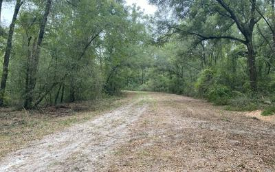 10AC 190TH PLACE, OBrien, FL 32071 - Photo 2