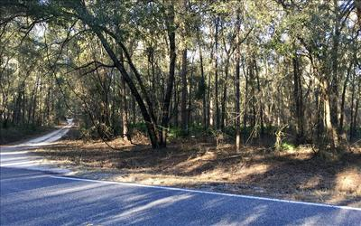 FROM LIVE OAK; SOUTH ON HWY 129; RIGHT ON CR 349; PROPERTY ON RIGHT, OBrien, FL 32071 - Photo 1