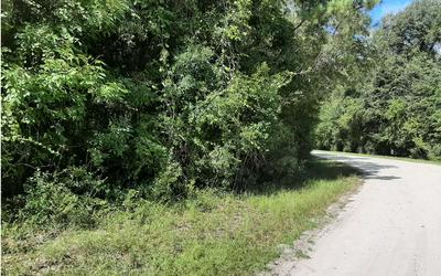 SE OAK TREE ROAD, Branford, FL 32008 - Photo 1