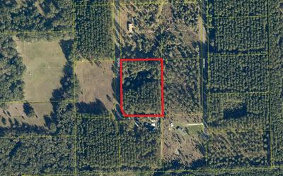 TBD 49TH ROAD, Wellborn, FL 32094 - Photo 1