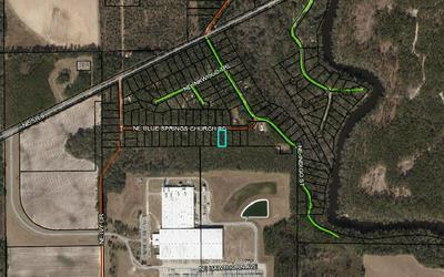 NE BLUESPRINGSCHURCH RD, Lee, FL 32059 - Photo 1