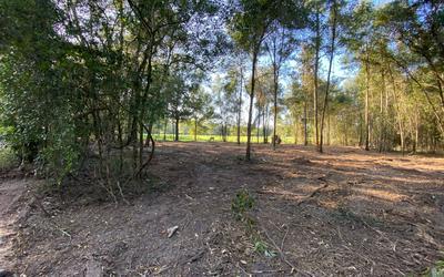 TBD BRANTLY RD, OBrien, FL 32071 - Photo 2