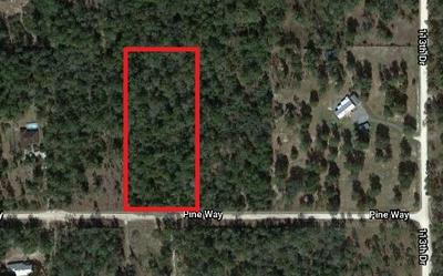 TBD 204TH STREET, OBrien, FL 32071 - Photo 1